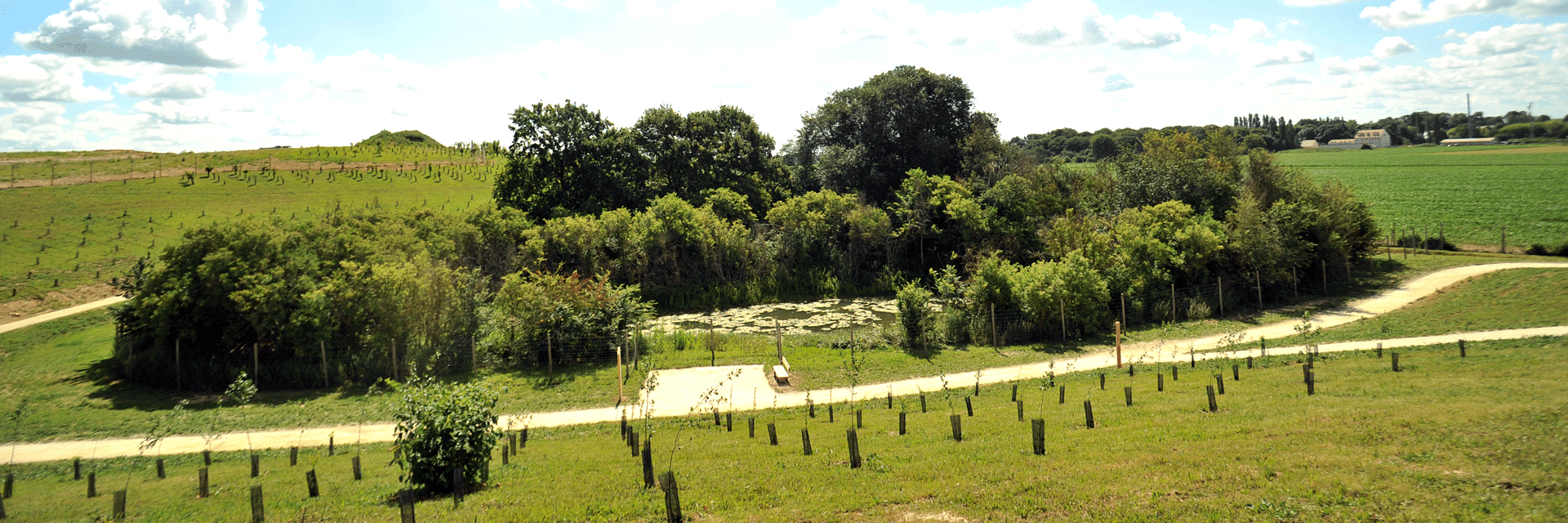 Tournage vidéo ECT par l'agence Siouxe au Parc de l'arboretum à Moissy-Cramayel